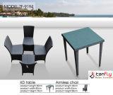 Tavola rotonda e presidenza del giardino esterno della mobilia