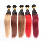 "8 "" - 32 "" 바디 Wave Ombre 1b/27 Virgin 브라질 Human Hair"