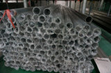 Tubulação de fonte da água do aço inoxidável do En SUS316 (Dn54*1.5)