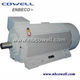 Motor eléctrico de la inducción trifásica con alta calidad