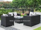 熱い販売および高いQuanlityのSetgardenリッジの屋外の家具を食事する藤の庭
