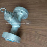 2500lb выковало задерживающий клапан поршеня фланца уплотнения давления нержавеющей стали