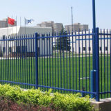Direkter Hersteller hohe Sicherheits-des Röhrensicherheits-Fechtens