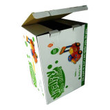 Caja del cartón duradera impresión en color (FT500)
