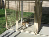 Heißer Verkauf gebildet in China galvanisierter Hundehundehütte