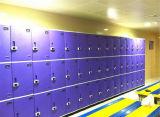 3 couches d'ABS de mémoire de Module de gymnastique de qualité d'utilisation