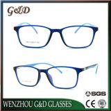 Het Populaire Optische Frame van uitstekende kwaliteit T6013 van het Oogglas van Eyewear van de Glazen van de Manier Tr90