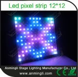 LED Pixel Strip Madrix Controlled 12*12 für Event