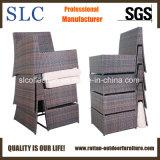 Софы ротанга гостиницы мебели патио софа установленной Wicker установленная секционная (SC-3005-B)