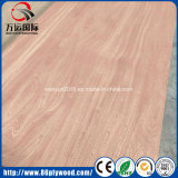 Tarjeta comercial madera contrachapada roja del cedro de lápiz de la ceniza de Okoume de los muebles/del roble