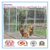 Гальванизированная псарня собаки, клетка ячеистой сети