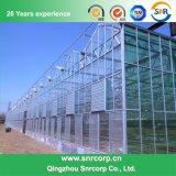 農業の温室