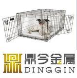 Fundamento em linha do cão da compra