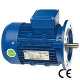 Größe des Rahmen-63~350 elektrischer Wechselstrom-Induktions-dreiphasigmotor mit Cer (Y2-112M-2)