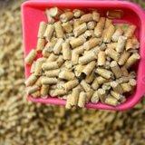 Choix parfait pour des familles de Multi-Chat de grouper le sable en masse compacte de chat d'argile