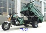 命令貨物ボックス(TR-24)が付いている250cc EECの三輪車