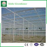Chambre verte en aluminium en verre/de cavité en verre Tempered pour l'agriculture/film publicitaire