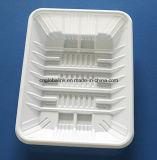 PP는 명확한 처분할 수 있는 조가비 물집 과일 음식 포장 쟁반을 귀여워한다