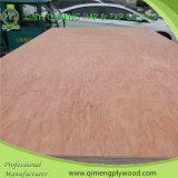 Pappel Core 18mm Uty Grade Commercial Plywood mit Low Price