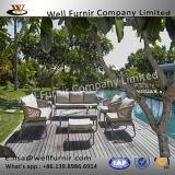 Sofa argenté de rotin de Leisuire de fini de noix pour le petit patio ou balcon