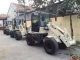 Mini Wheel Loader Zl08 met Ce