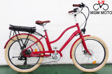500Wモーターを搭載する合金フレーム都市電気バイク