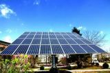 고능률을%s 가진 245W 많은 태양 에너지 위원회