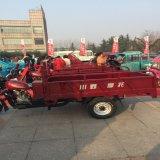 Roda mecânica Trike da gasolina três do motor Trike/do freio com Cabine