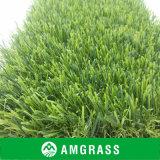 美しい緑Uの形総合的なGrasの庭の草、景色の草