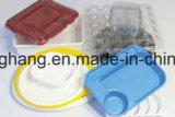 Vácuo de alta velocidade que dá forma à máquina (DH50-68/120)