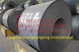 Bobines galvanisées d'acier pour le matériau d'élément