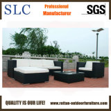 Sofá para al aire libre, sofá de la rota de la rota fijado (SC-B8851)