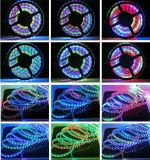관례 3528 72LED/M 8mm White 12V LED Flexible Strip (JA-3528-72-8MM-12V)