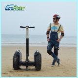 Les scooters électriques de char de la Chine, ce ont reconnu les scooters de équilibrage d'individu à deux roues
