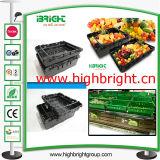Caixa plástica de plástico de supermercado para legumes e frutas