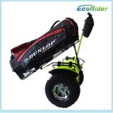 Scooter elétrico de uso de golfe, veículo de mobilidade pessoal da marca Ecorider, carrinho de golfe de duas rodas