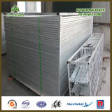 Gebildet in China Decorative Temporary Fencing/Temporary Construction Fence Factory