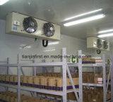 Congélateur à air forcé de bonne qualité/entreposage au froid/chambre froide à vendre le prix