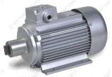 MS سلسلة من ثلاثة المرحلة غير المتزامن المحركات الكهربائية