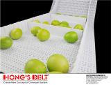 Correia transportadora plástica modular de Food&Beverage do produto comestível