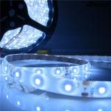 DC12V SMD5050 impermeabilizzano la striscia rossa del LED