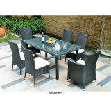6개의 의자를 가진 의자를 식사하는 정원