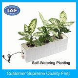 現代注入の水をまいているプラスチック植木鉢の自己植木鉢を植える