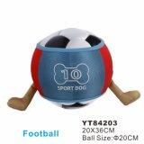 Sport-Kugel, Fußball-Kugel, Spielzeug (YT84210)