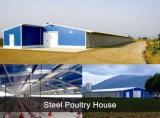 House+Equipment для фермы цыпленка (PCH-7)