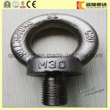 고품질 작은 눈 놀이쇠 및 Nuts 제조자 M30