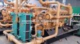 Type de conteneur générateur d'énergie de biogaz avec la centrale de gaz du système 1MW de PCCE