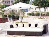 Vime do pátio do jardim/mobília do Rattan ajustada - mobília ao ar livre (LN-044)