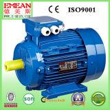 Y-Serie Dreiphasen-Wechselstrom-Elektromotor mit CER (Y132M-4)