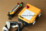Controlo a distância F24-10d do rádio do guindaste aéreo da viga do dobro do certificado do Ce